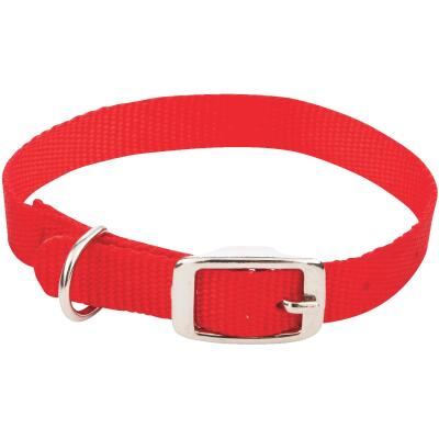 Westminster Pet Ruffin' it Adjustable 16 In. Nylon Dog Collar
